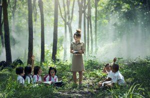 nauczanie w lesie na temat nowej konsoli Microsoft